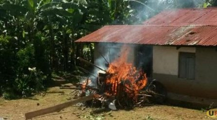 Mob raids funeral, burn body & coffin of suspected kidnapper.